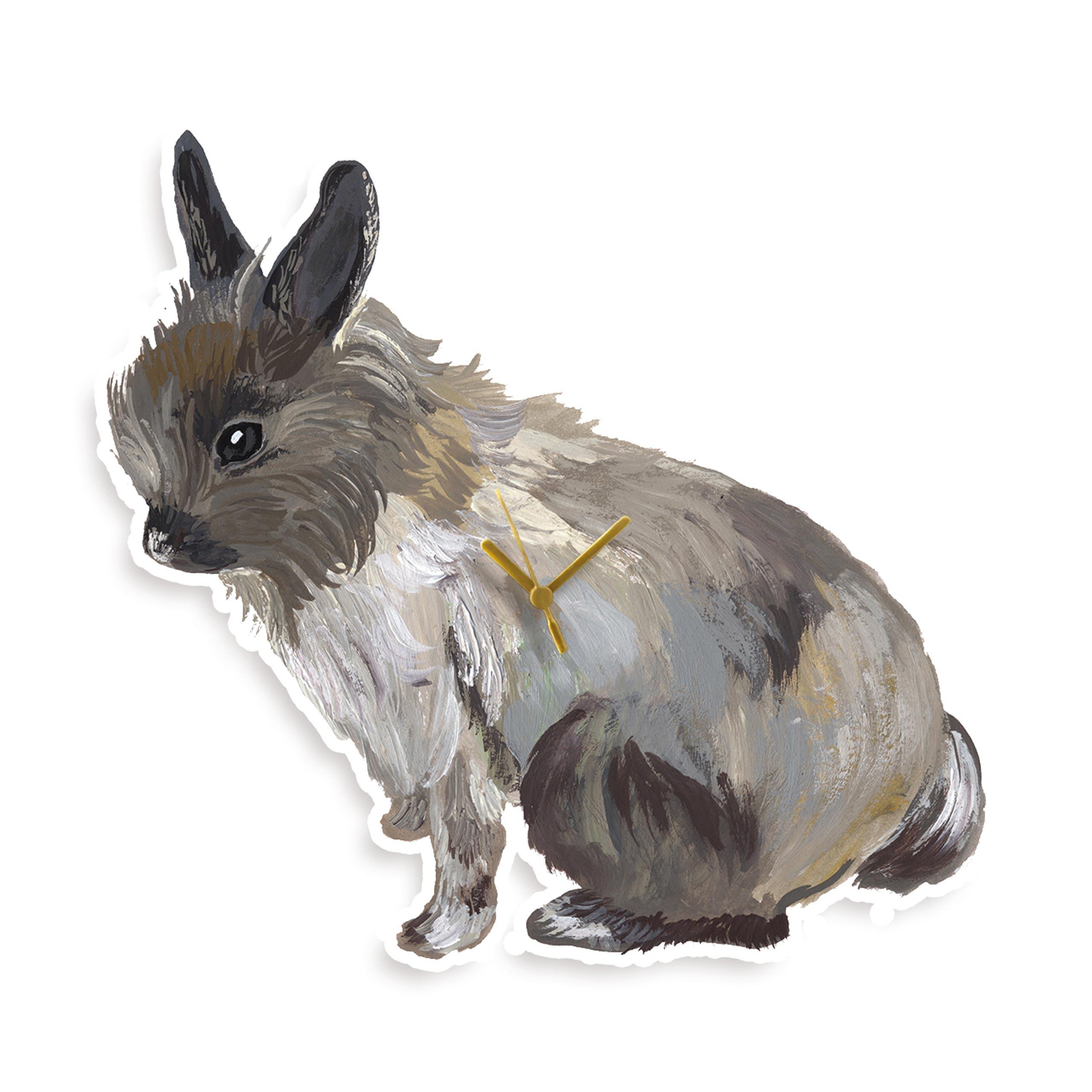 Lapin gris
