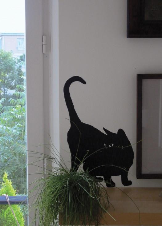 Guitou the cat black